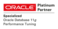 Oracle Platinum Performance Tuning