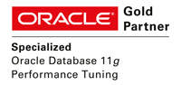 Spezialisierung Oracle Performance Tuning
